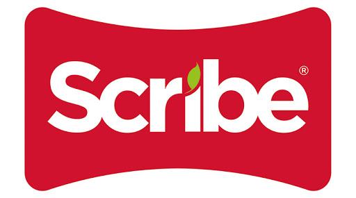 Logo Scribe