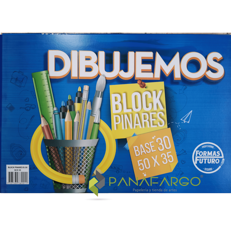 Block Pinares 50x35 (1/4) Sin Rotular Forma Futuro 40 hojas + Panafargo