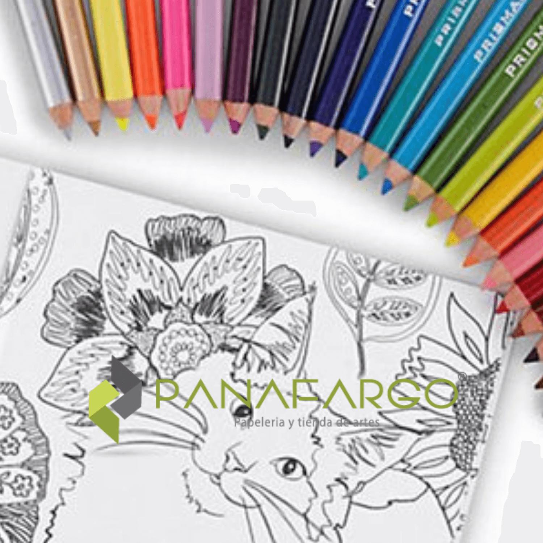 Estuche Prismacolor Premier X 12 Colores Mas Libro Para Colorear cuaderno+ + Panafargo
