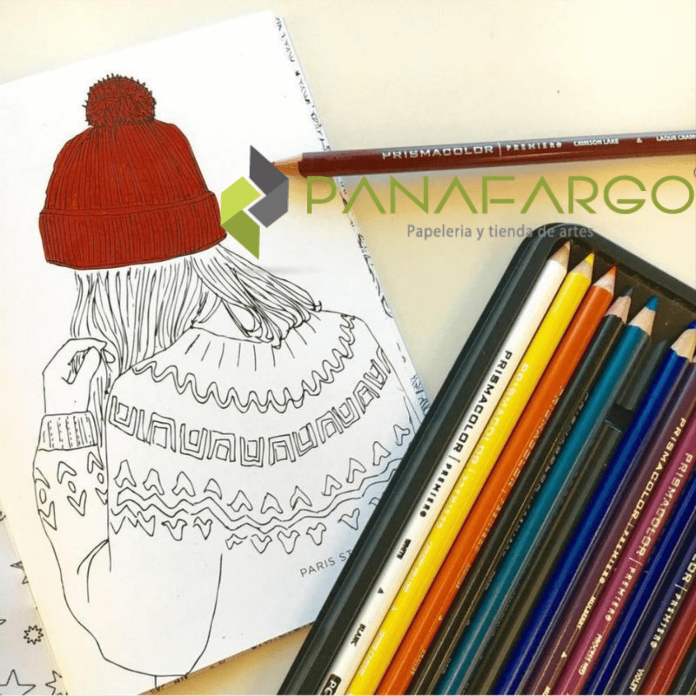 Estuche Prismacolor Premier X 12 Colores Mas Libro Para Colorear gorro + Panafargo